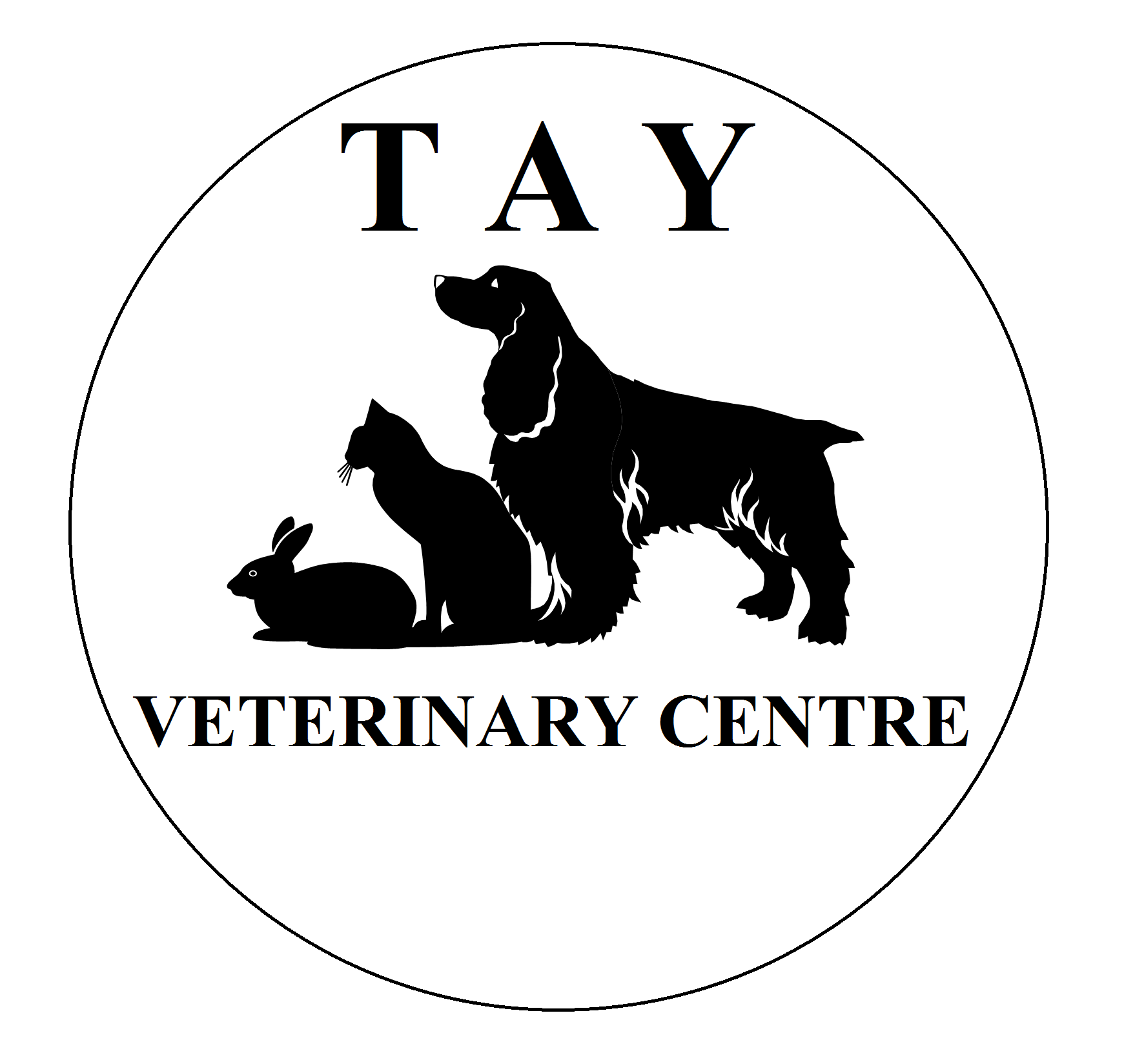 about us tay vets dundee scotland